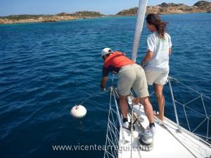 Pescando boyas